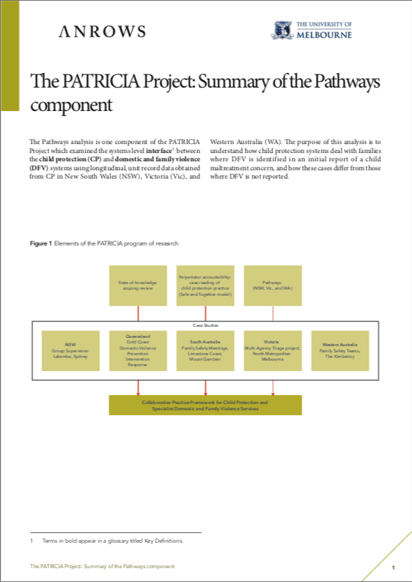 The PATRICIA Project: Summary of the Pathways component