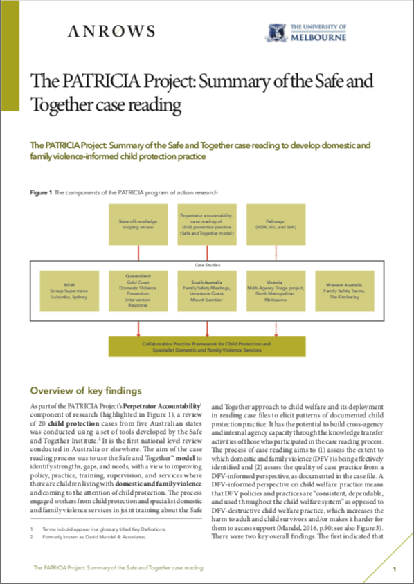 The PATRICIA Project: Summary of the Safe and Together case reading